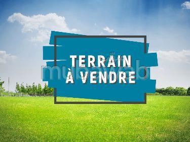 AVENDRE TERRAIN – EL AOUINA – FB.504